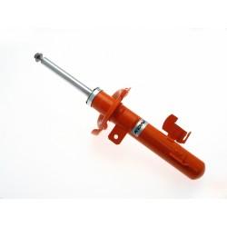 STR.T Kit 10-12